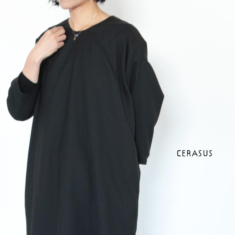 CERASUS(ケラスス) アイオライトフリンジネックレス